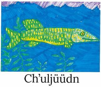 chuljuudn